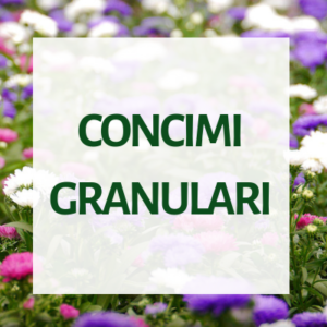 Concimi granulari per floricoltura e vivaismo