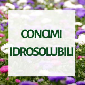 Concimi idrosolubili per floricoltura e vivaismo