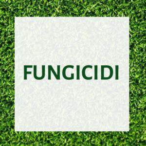 Fungicidi tappeto erboso