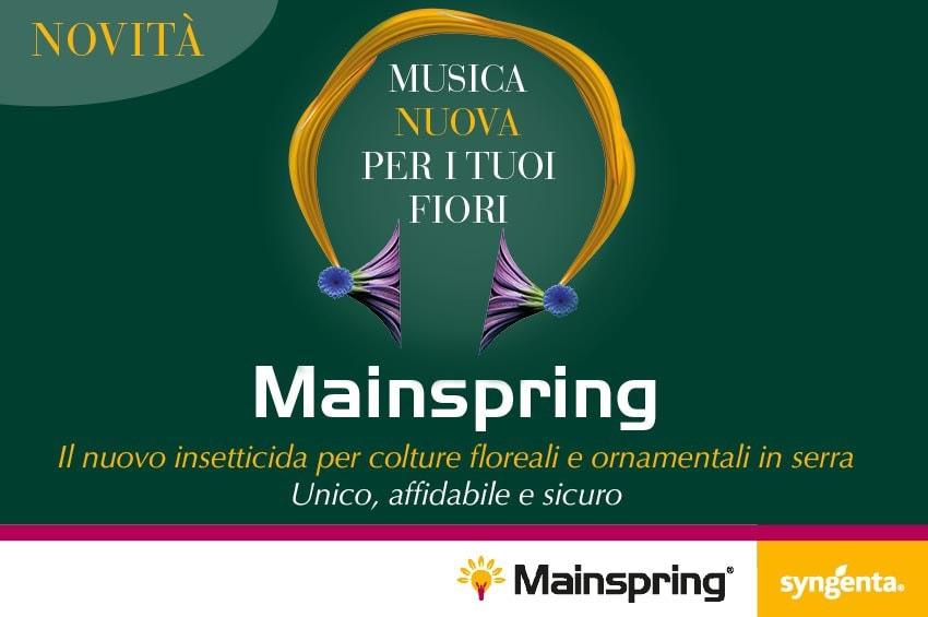 MAINSPRING LT.0,2