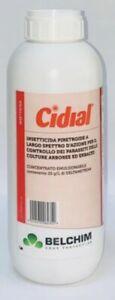 CIDIAL LT.1