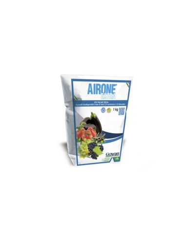 AIRONE EXTRA KG.10