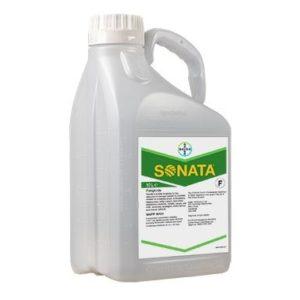 SONATA SC LT.5