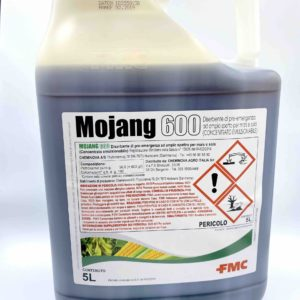 MOJANG 600 LT.5