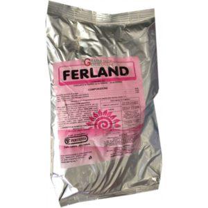 FERLAND 634 KG.1
