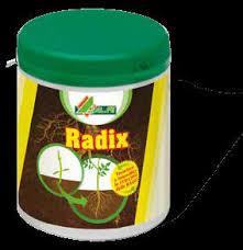ALFE RADIX RADICI SANE BARATTOLO GR.80