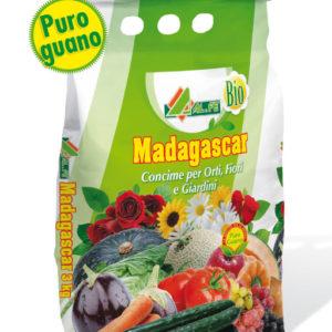 ALFE MADAGASCAR CONCIME ORGANICO KG.3